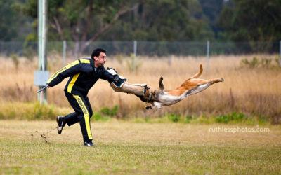Schutzhund Trials 2009