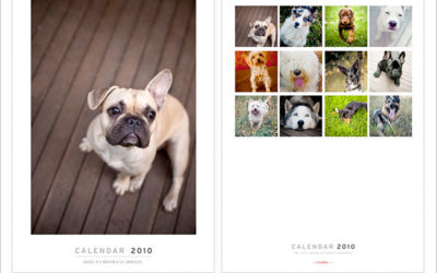 2010 calendars now available!