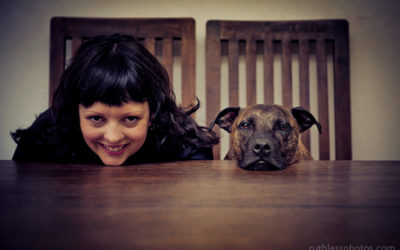Photo Competition | Sydney Dog Photographer