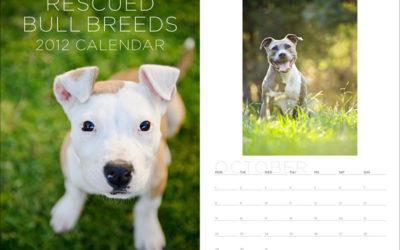 2012 fundraiser calendars