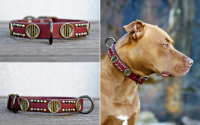 Ruthless Leather update #19 | strong leather dog collars