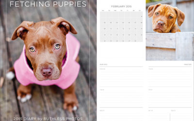 2015 calendars and diaries | Sydney Dog Photographer