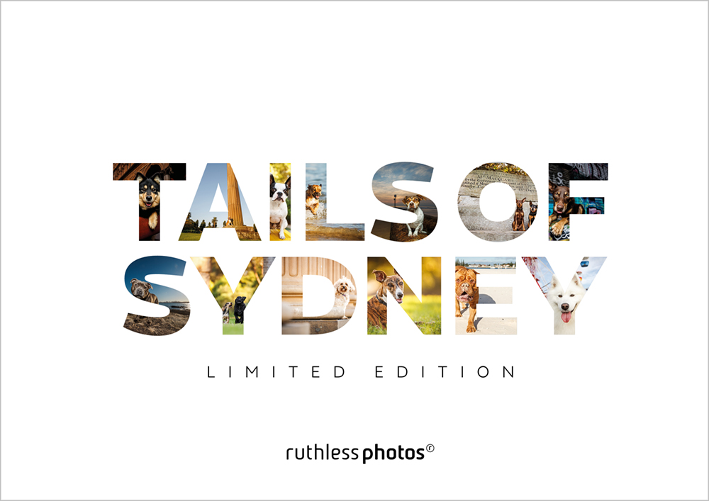 Tails of Sydney dog photography book