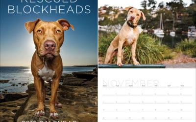 2016 calendar and diary | Sydney Dog Photographer