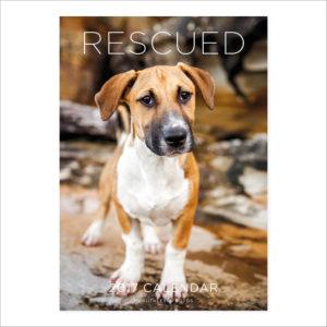 2017_calendar_rescued_cover