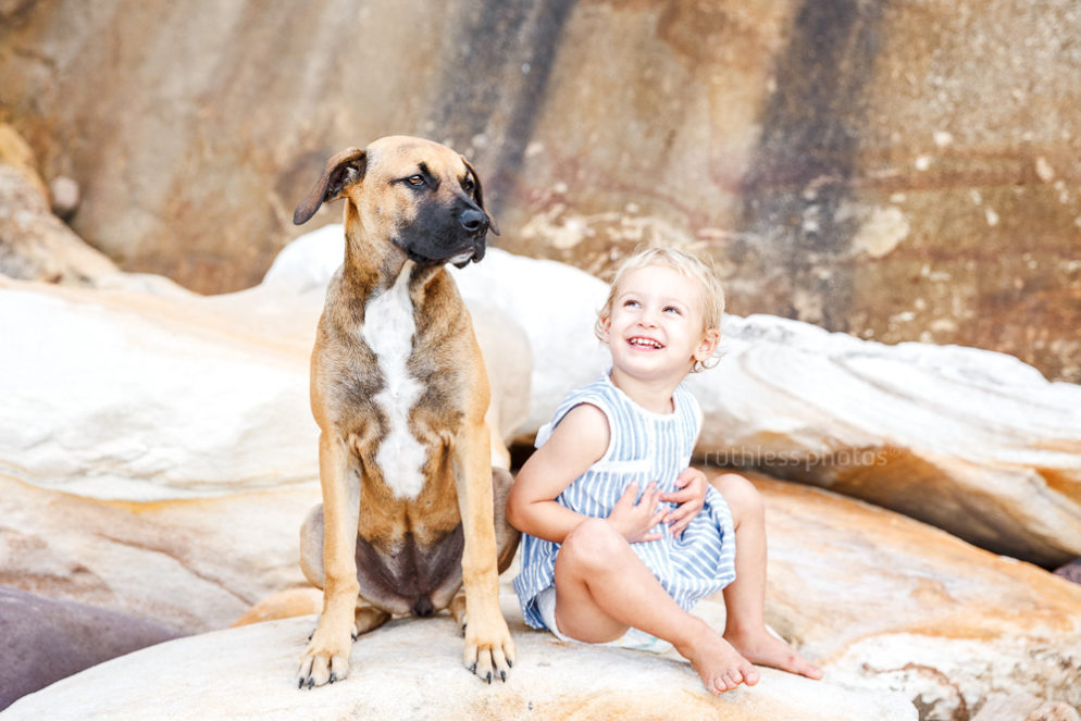 Ruthless Photos Archives - ruthless photos - sydney and canberra dog