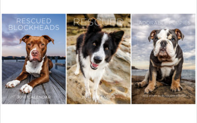 2018 calendars and diary – Sydney Dog Photographer