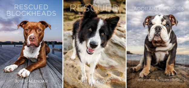 2017 charity rescue dog calendar and diary