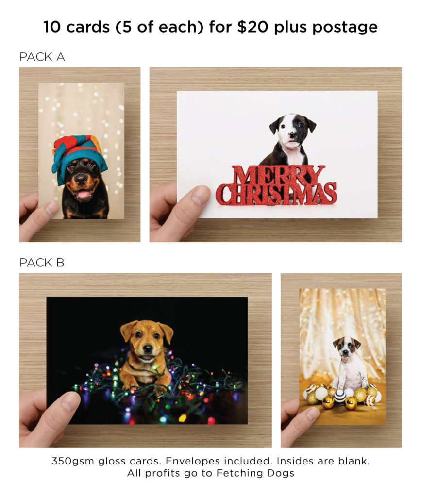 rescue puppy christmas cards