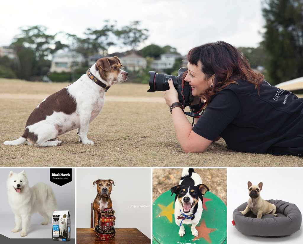 fetching dogs ruthless photos mega fundraiser