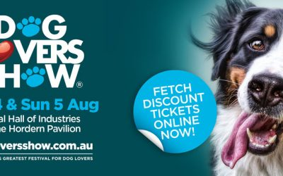 It's showtime – Sydney Dog Lovers Show