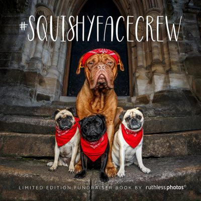 squishy face crew book cover