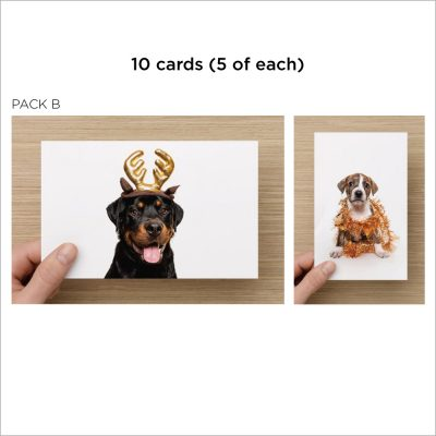 dog charity christmas cards