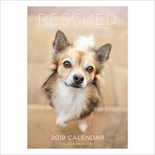 2019 rescue dogs calendar