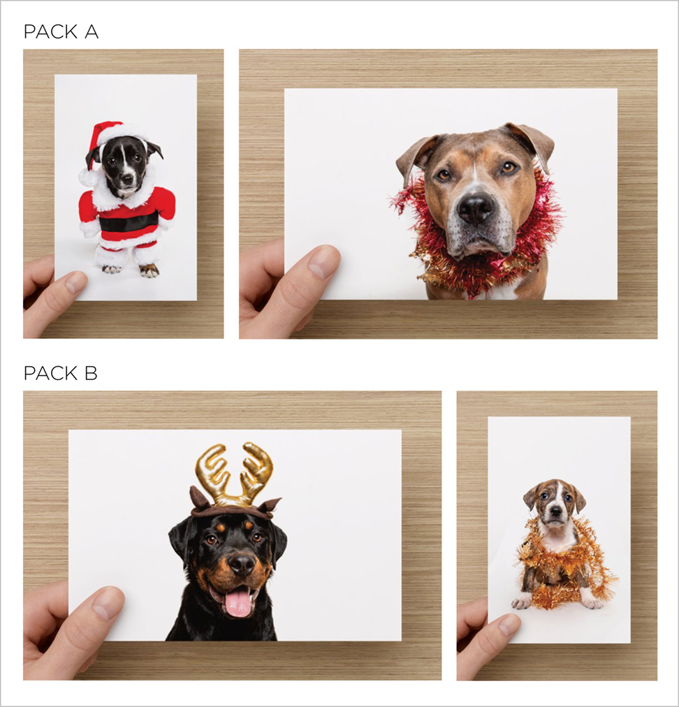 rescue dog and puppy christmas cards