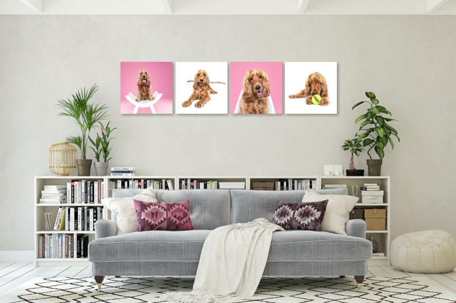 Bohemian Modern Living Room