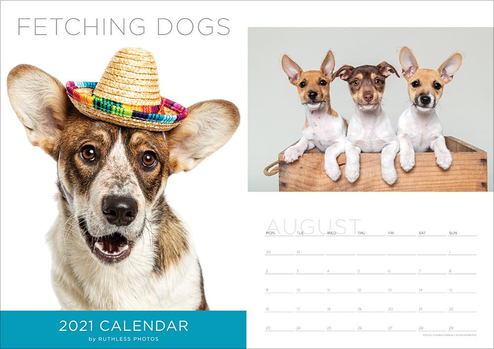 2021_calendar_rescued_cover