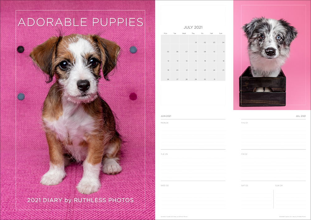 2021_diary_puppies_cover